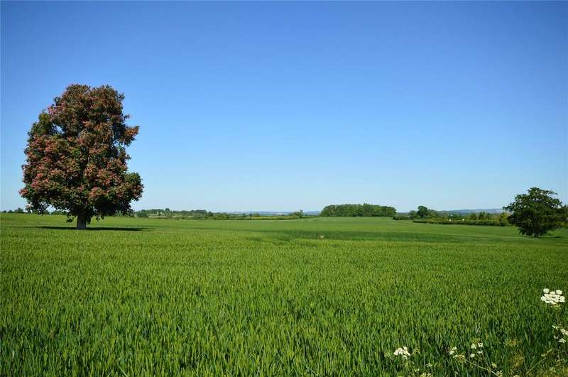 Land Commercial for sale in Approx 1065 Acres Land At, Kingsdon, Somerton, Somerset, TA11
