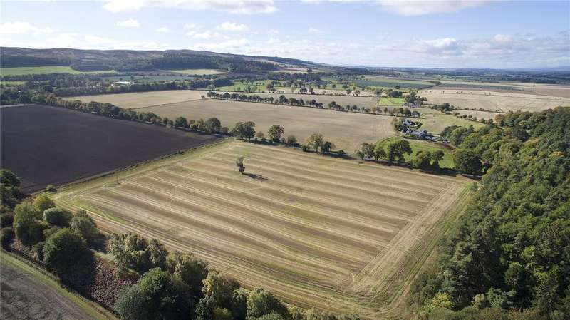 Farm Commercial for sale in Belmont Farmland: Lot 4, Newtyle, Blairgowrie, Perthshire