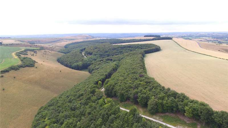 Land Commercial for sale in Melbury Wood, Melbury Abbas, Shaftesbury, Dorset, SP5