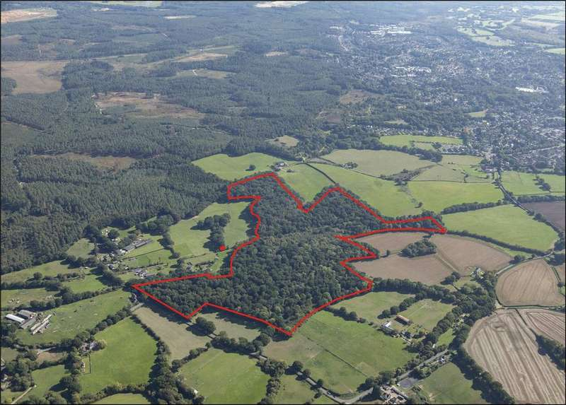 Land Commercial for sale in The Roughs and Burrows Copse, Edmondsham, Verwood, Dorset, BH21
