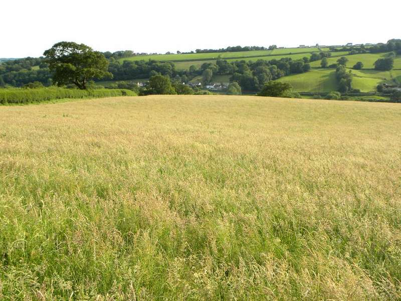 Farm Land Commercial for sale in 64 Acres Part of Faerdre Fach, Llandysul