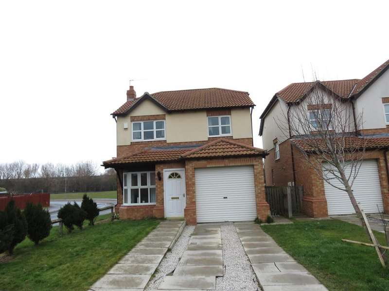 3 Bedrooms Detached House for sale in Stapylton Drive, Horden, County Durham, SR8 4HY