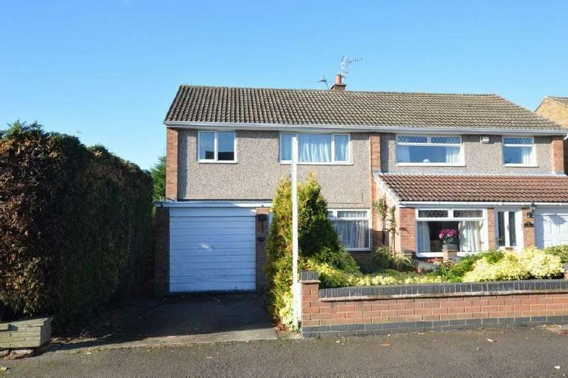 3 Bedrooms Semi Detached House for sale in The Bridle , Glen Parva, Leicester