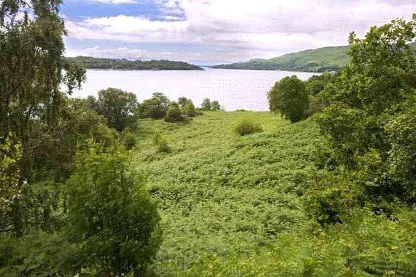 Land Commercial for sale in Waterfront Living Plot 3, Bonawe, Argyll, PA37