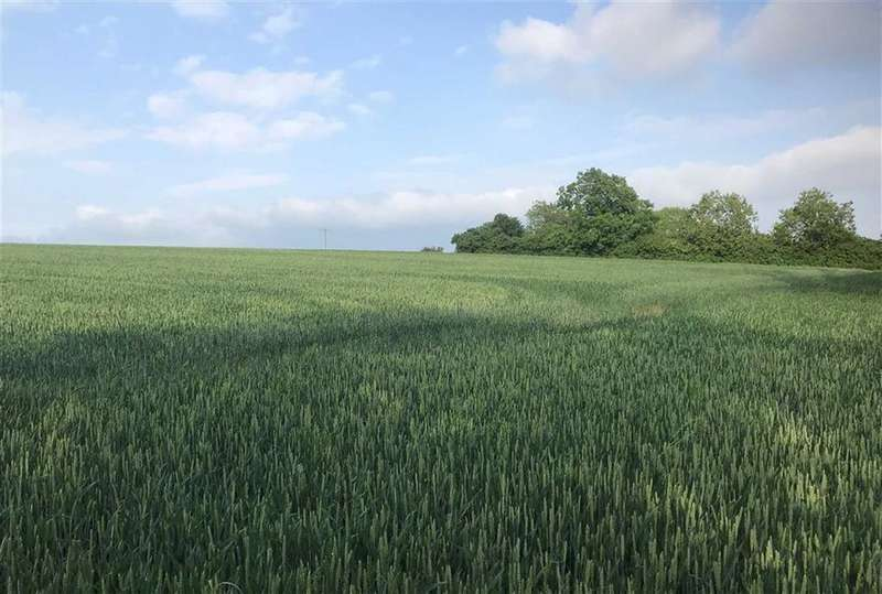 Land Commercial for sale in North Cowton, Northallerton