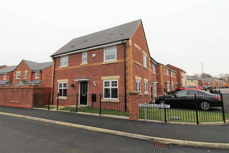 3 Bedrooms Semi Detached House for sale in Common Alder Way, Blackley, Manchester