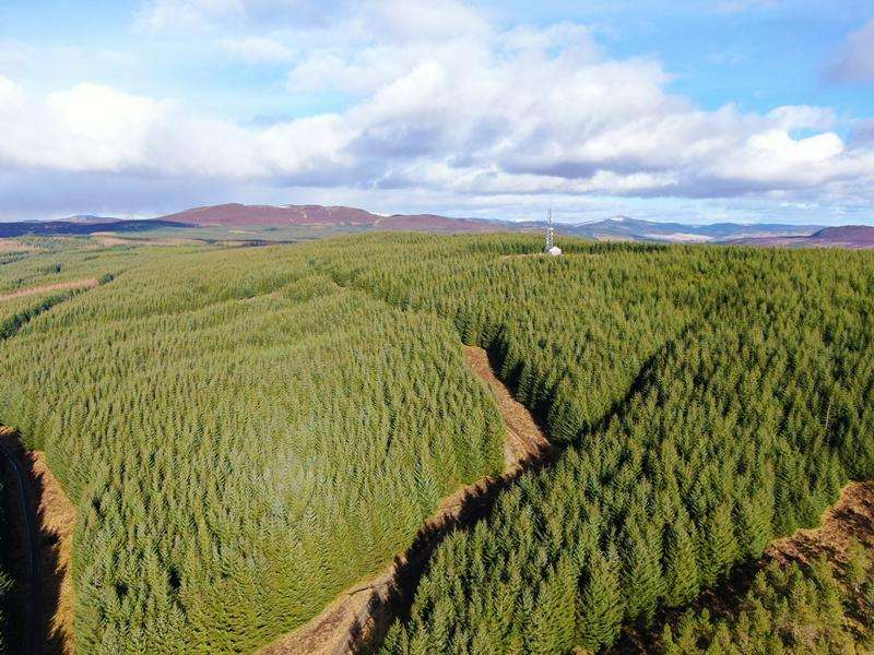 Land Commercial for sale in Pitcastle and Pylon Brae Forests, Nr Pitlochry, Perthshire PH16