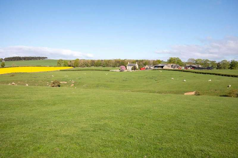 5 Bedrooms Farm House Character Property for sale in Colwell, Hexham, Northumberland, NE46