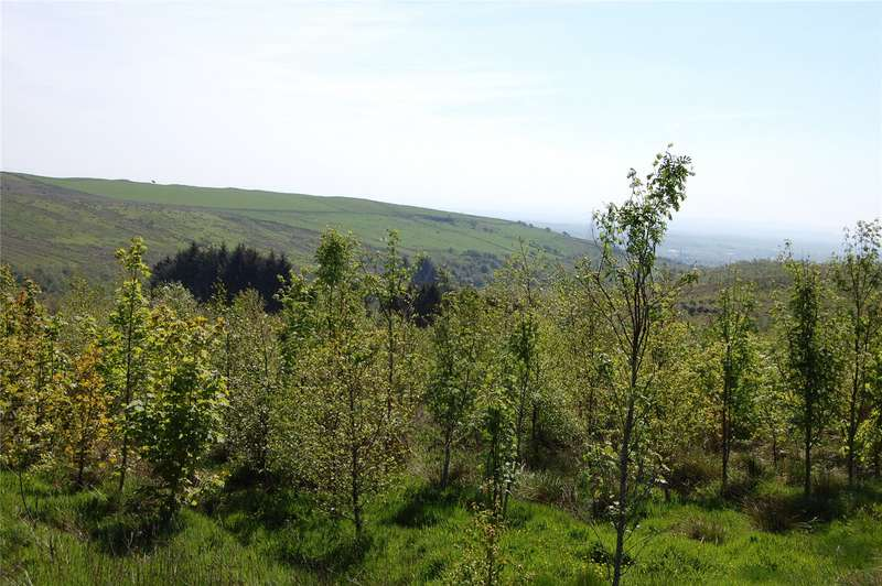 Farm Commercial for sale in Brodoclea Woodland, Dalry, North Ayrshire, KA24