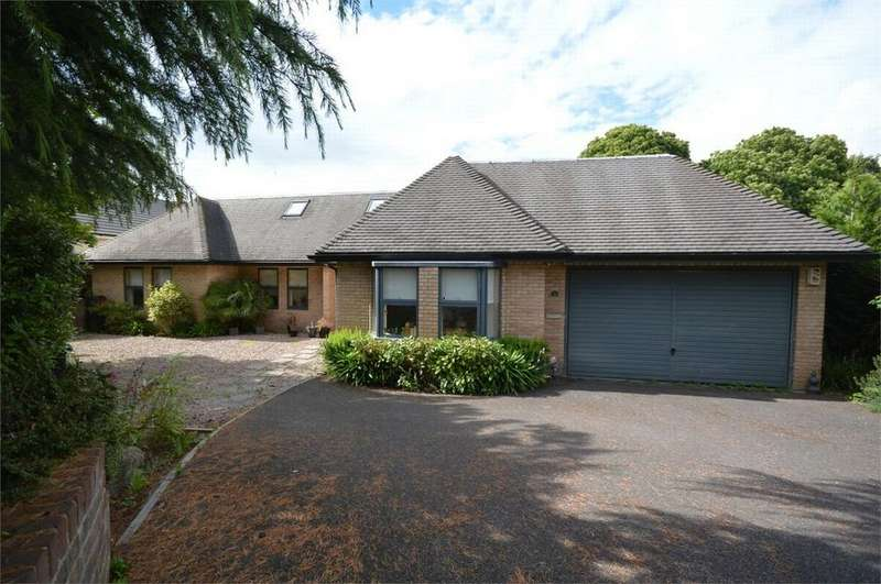 5 Bedrooms Detached House for sale in Walmers Avenue, Higham