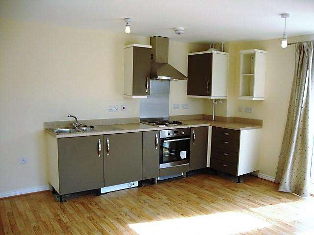 2 Bedrooms Ground Flat for sale in GWALIA HOUSE, AMBER CLOSE, CITY VISION, NEWPORT NP19
