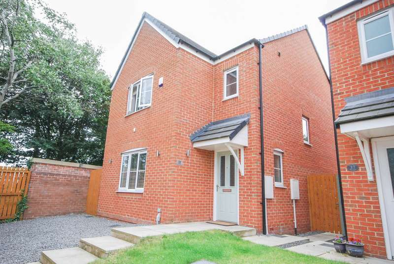 3 Bedrooms Detached House for sale in Flint Road, Alexandra Park