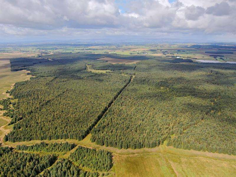 Land Commercial for sale in Glenouther Forest, East Ayrshire KA3