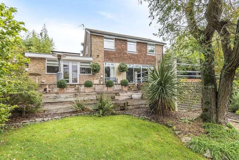 4 Bedrooms Detached House for sale in Elmleigh, Midhurst, GU29