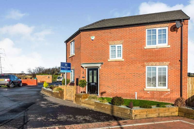 3 Bedrooms Detached House for sale in Trueman Drive, Rawmarsh, Rotherham, South Yorkshire, S62