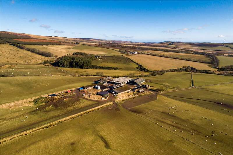 Farm Commercial for sale in Lot 1 - Tipperty Farm, Auchenblae, Laurencekirk, Aberdeenshire, AB30