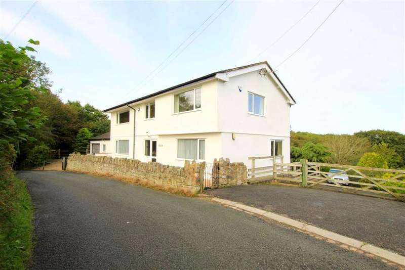 7 Bedrooms Detached House for sale in Downing Road, Whitford, CH8