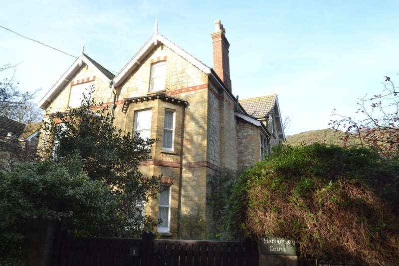 6 Bedrooms Semi Detached House for sale in Spring Gardens, Ventnor