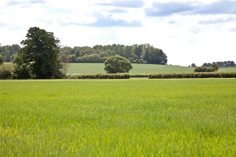 Farm Commercial for sale in Crown Road, Marnhull, Sturminster Newton, DT10