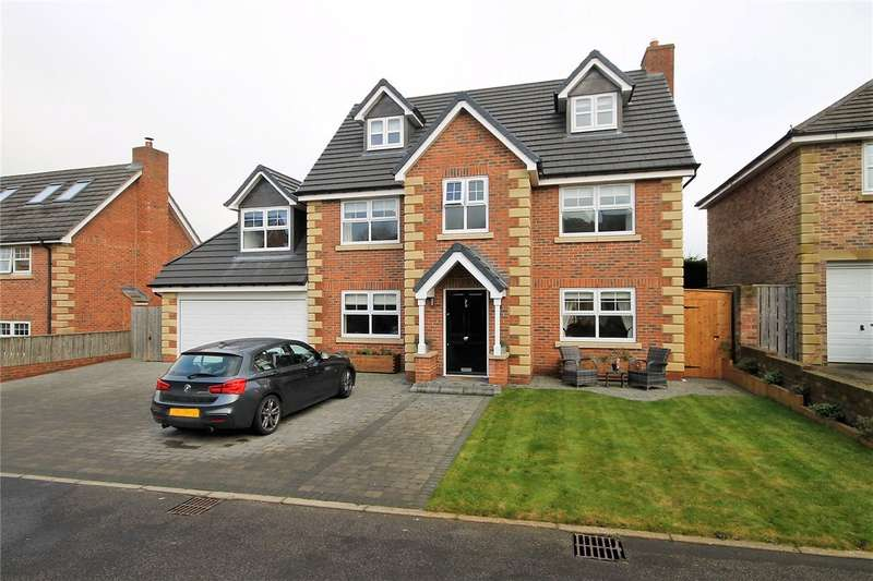 6 Bedrooms Detached House for sale in Sycamore Court, High Spen, Rowlands Gill, NE39