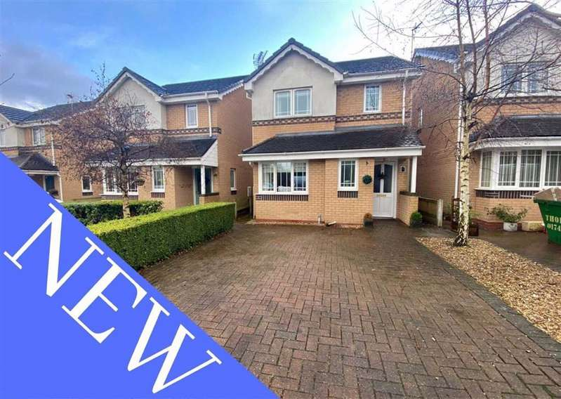 3 Bedrooms Detached House for sale in Maes Y Twr, Mold, Flintshire