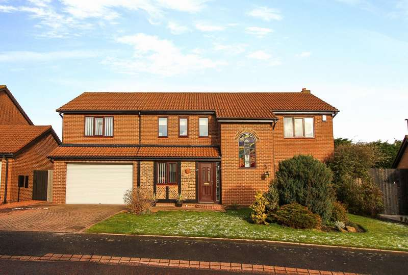 5 Bedrooms Detached House for sale in Kelso Drive, North Shields