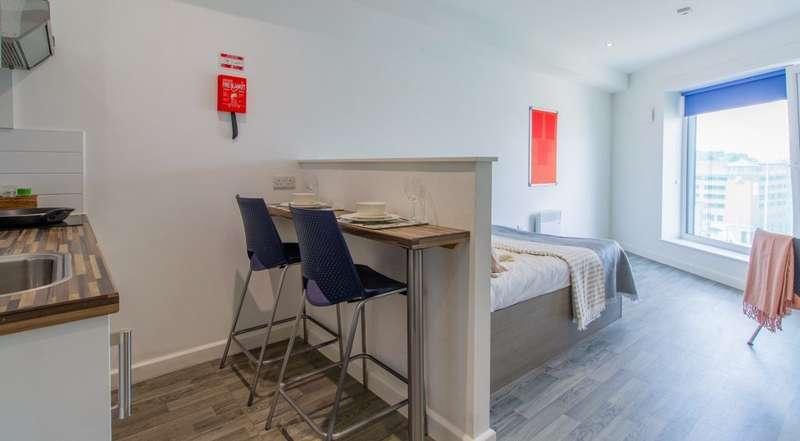 1 Bedroom Studio Flat for rent in Studio in student accomodation
