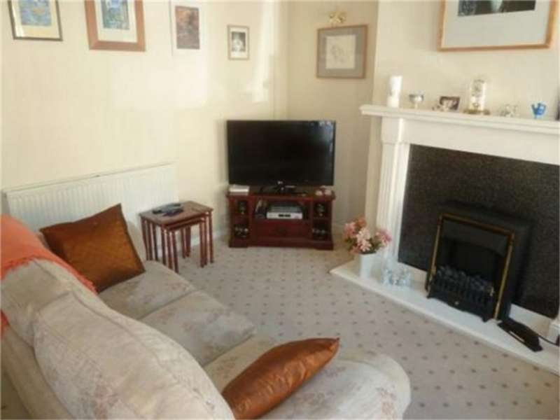 2 Bedrooms Terraced House for sale in Larch Street, NELSON, Lancashire