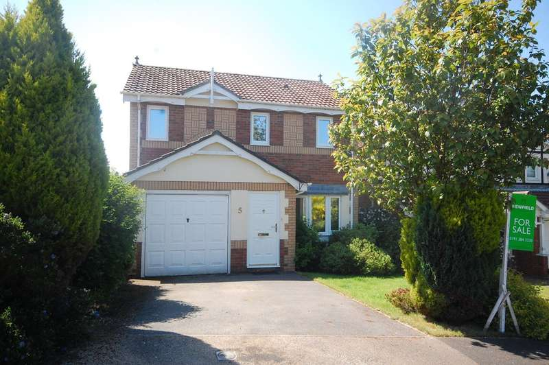 4 Bedrooms Detached House for sale in Hedley Court, Bearpark, Durham