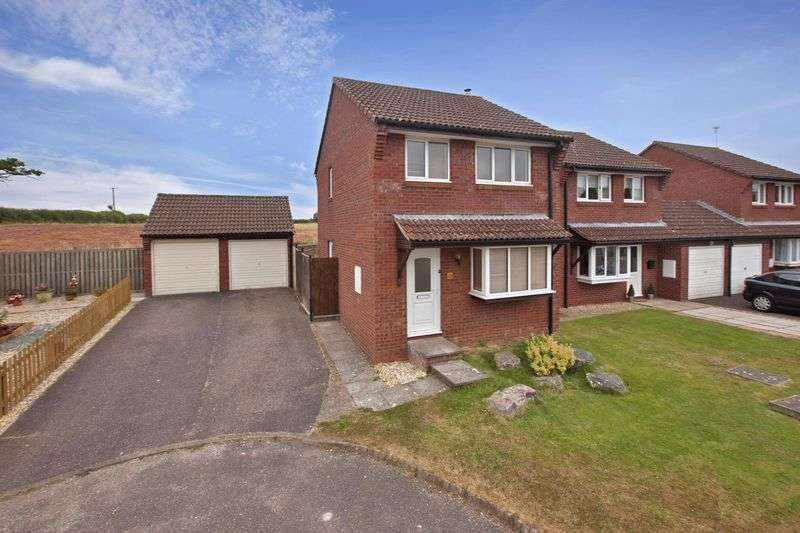 3 Bedrooms Detached House for sale in Richards Close, Wellington