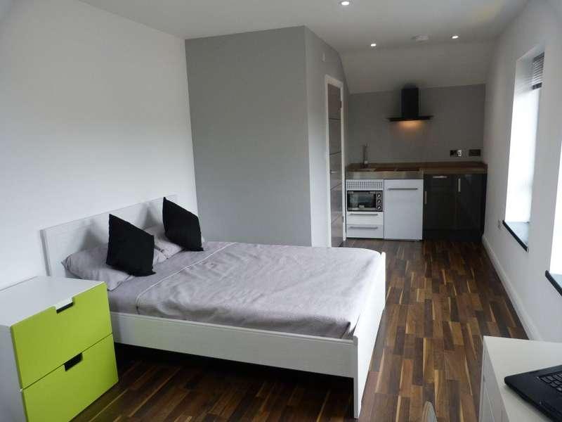 1 Bedroom Flat for rent in City Road, Roath ( Studio )
