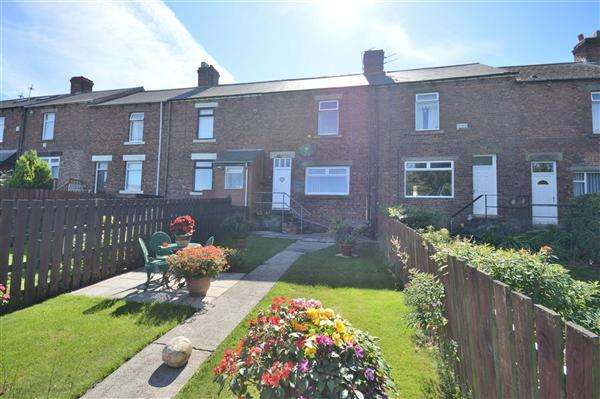 2 Bedrooms Terraced House for sale in Evelyn Terrace, Stanley
