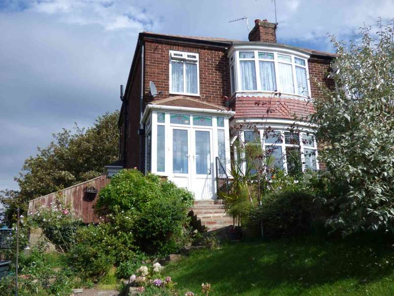 3 Bedrooms Semi Detached House for sale in ***REDUCED*** Church Lane, Marske By The Sea