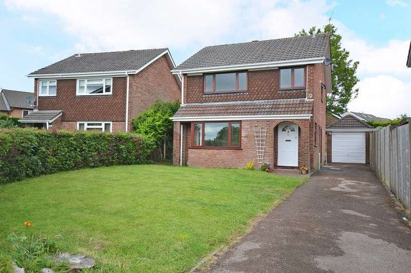 4 Bedrooms Detached House for sale in Brunel Avenue, Newport