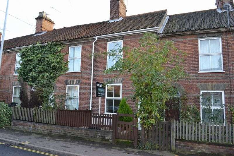 2 Bedrooms Terraced House for sale in Magpie Road, Norwich