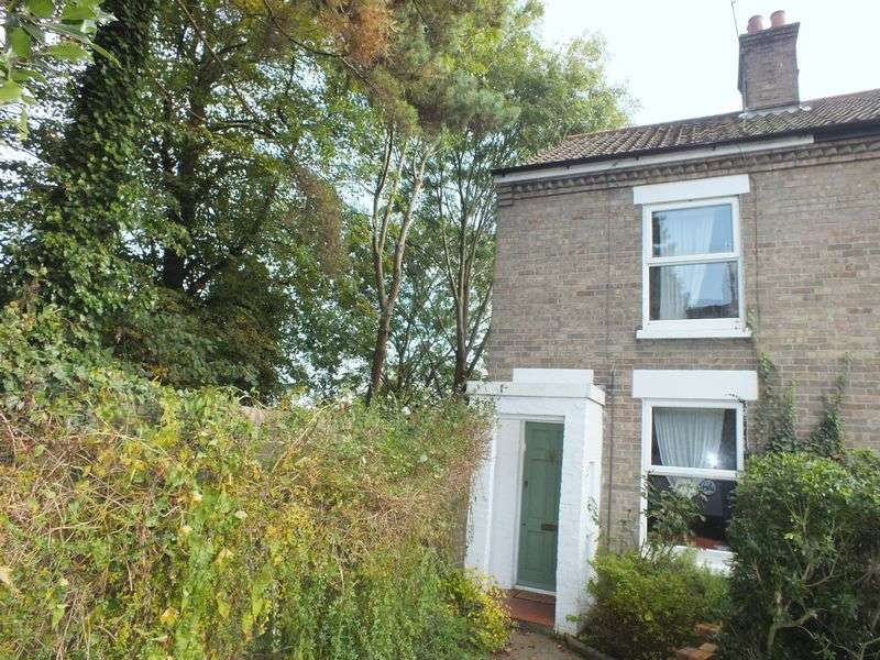 3 Bedrooms Semi Detached House for sale in Winter Road, Norwich