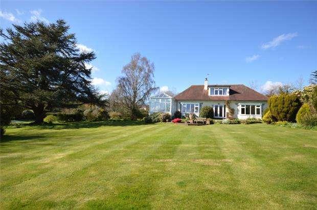 3 Bedrooms Detached Bungalow for sale in Green Lane, Ilsington, Newton Abbot, Devon