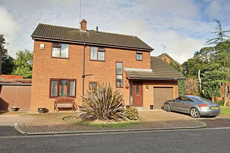 3 Bedrooms Detached House for sale in Hamilton Drive, Hull