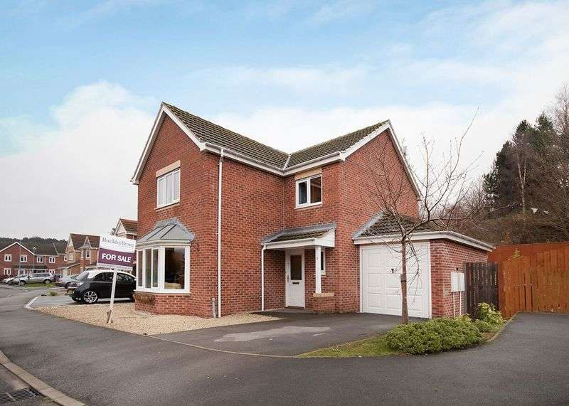 4 Bedrooms Detached House for sale in Arches Road, Mansfield