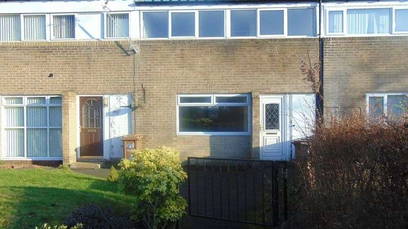 3 Bedrooms Terraced House for sale in Stockley Road, Washington