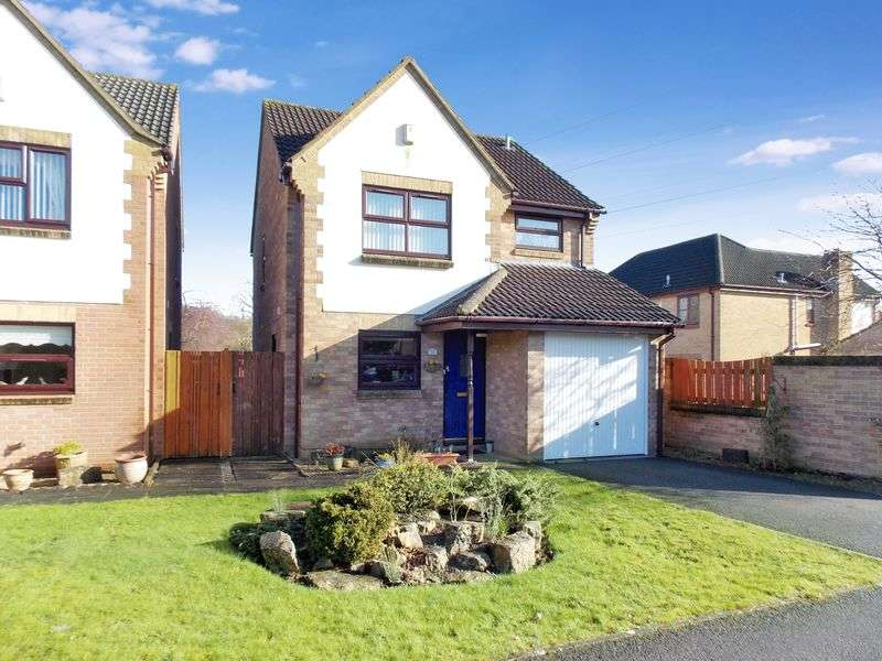 3 Bedrooms Detached House for sale in Blagdon Walk, Frome