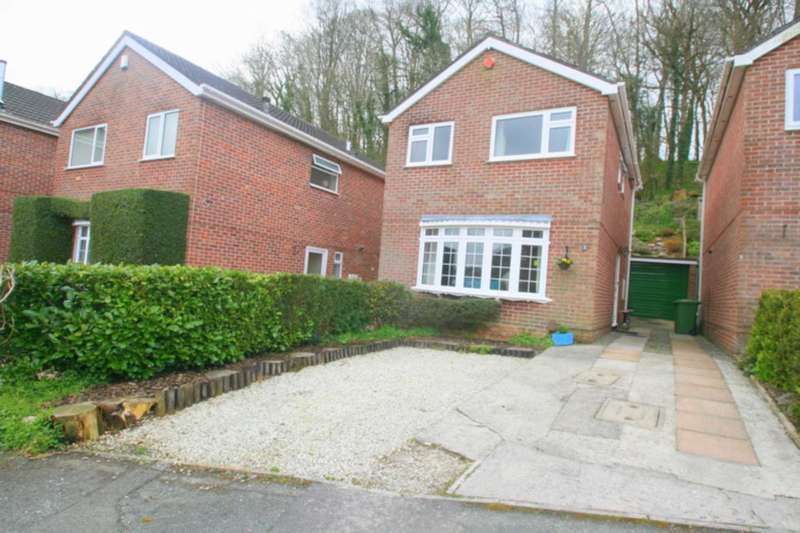 3 Bedrooms Detached House for sale in Southgate Close, Goosewell