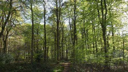 Land Commercial for sale in Oxfordshire