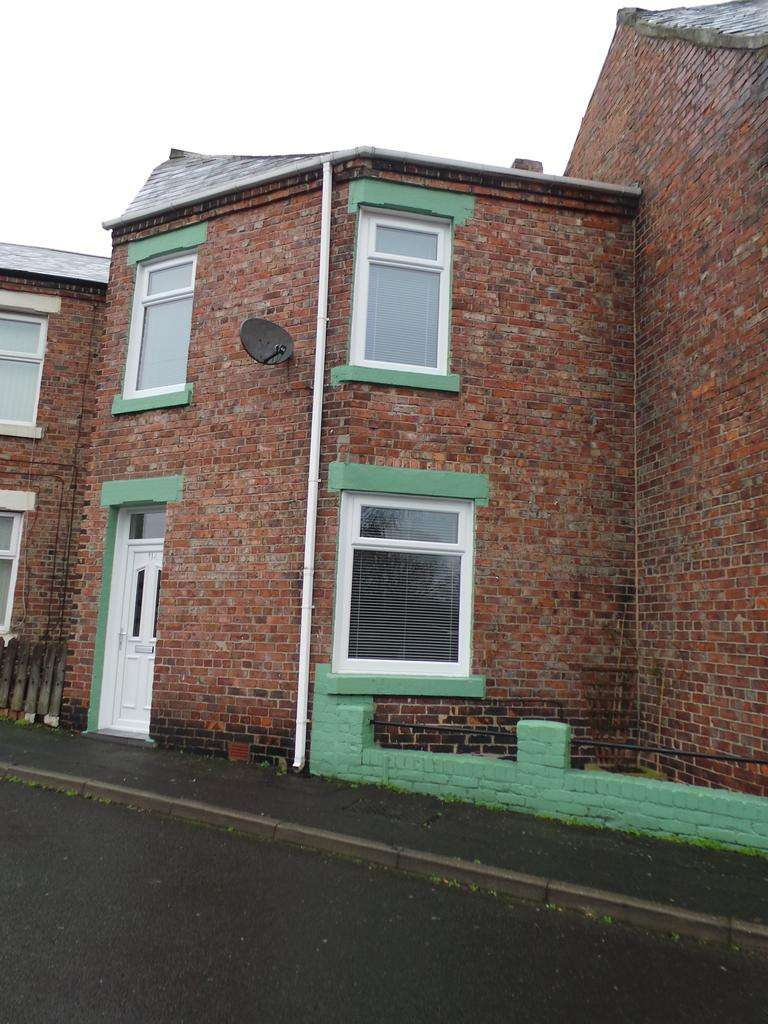3 Bedrooms Terraced House for sale in Haig Street, Dunston, Gateshead NE11