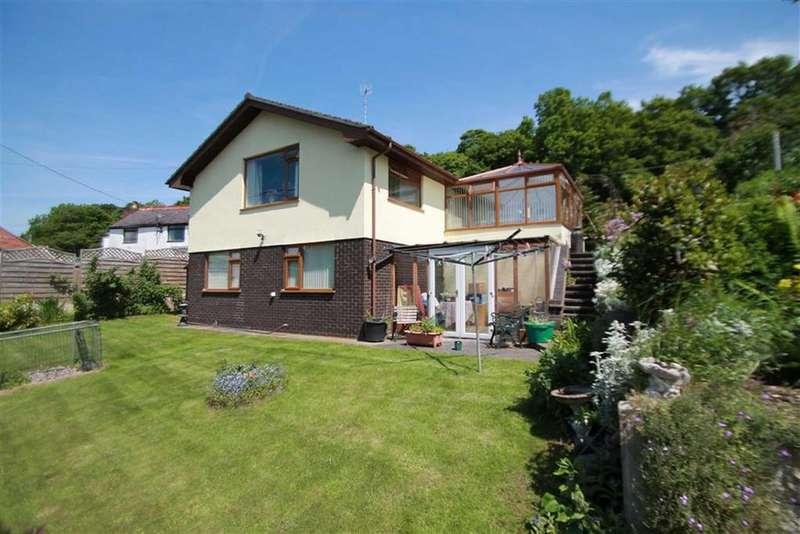 3 Bedrooms Detached House for sale in Park Road, Newbridge, Wrexham