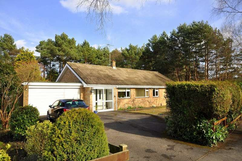 3 Bedrooms Detached Bungalow for sale in Ashley Heath, Ringwood, BH24 2HF