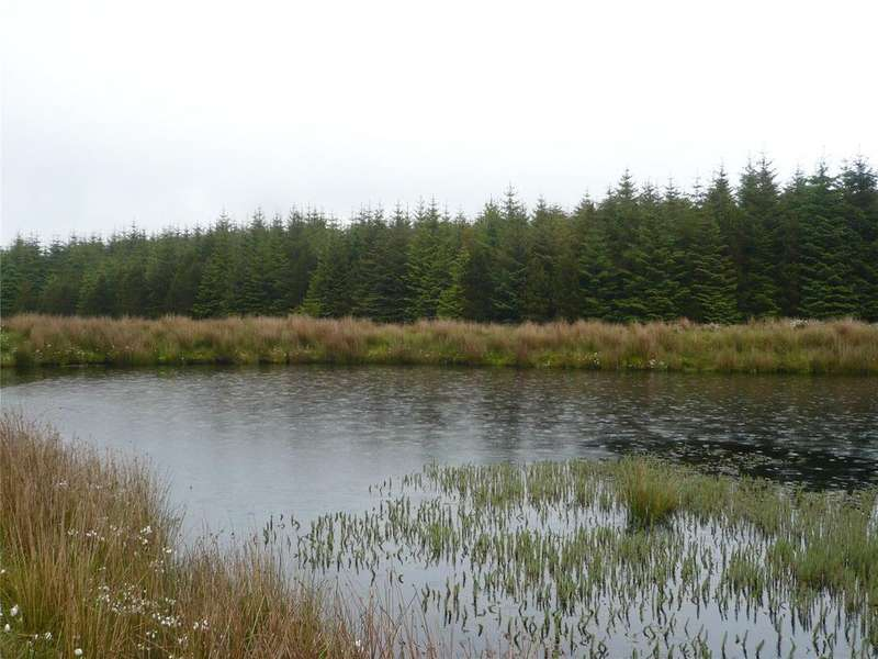 Land Commercial for sale in Easan Forest, By Lybster, Caithness, KW3