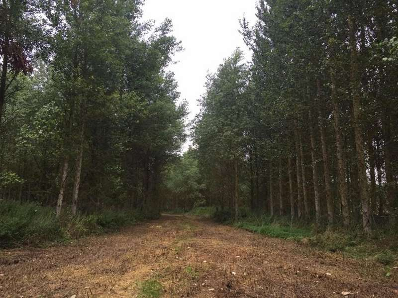 Land Commercial for sale in Parsons Lane, Chester