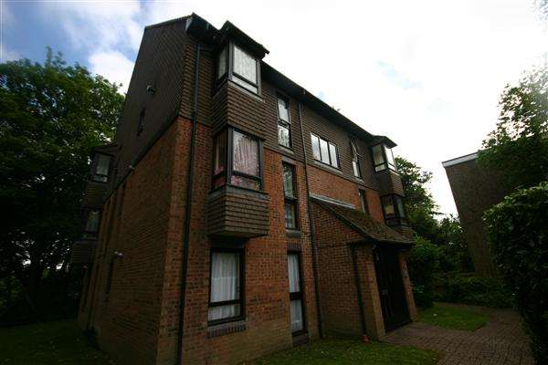 Studio Flat for rent in Tremona Court, Tremona Road, Southampton