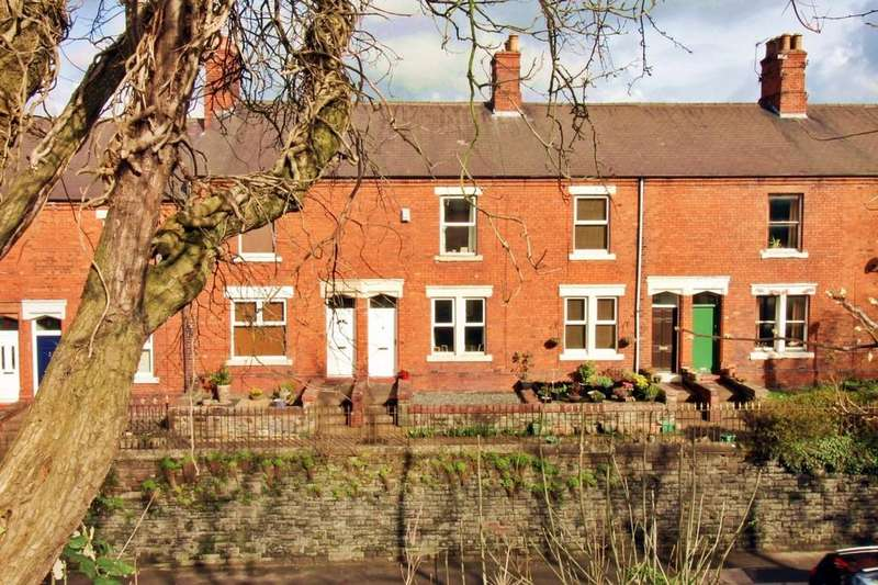 3 Bedrooms Terraced House for sale in Summerhill, Carlisle